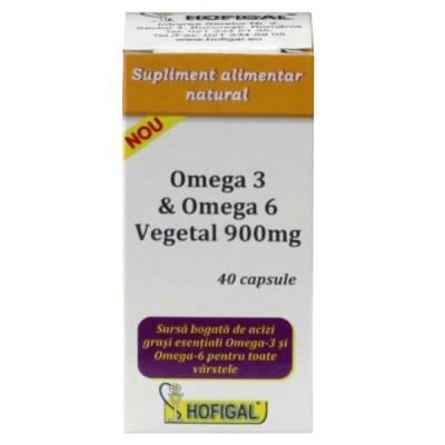 Omega 3 si Omega 6 vegetal 900mg 40capsule - Hofigal foto