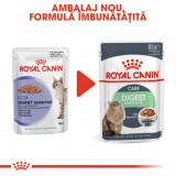 Royal Canin DIGEST SENSITIVE Hrana Umeda Pisica