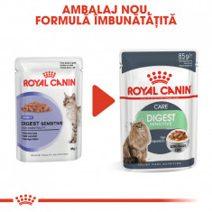 Royal Canin DIGEST SENSITIVE Hrana Umeda Pisica foto