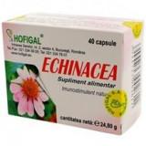 Echinaceea Hofigal 40cps Cod: 3417