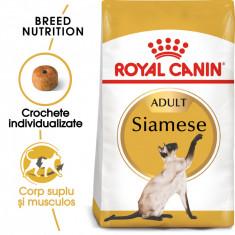 Royal Canin SIAMESE Adult Hrana Uscata Pisica foto