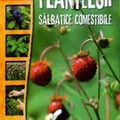 Cultura plantelor sălbatice comestibile