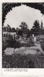 Bnk cp Timisoara - Vedere din parcul Stefan Plavat - circulata, Printata