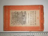 RARA = CARTE PENTRU COPII - POVESTEA FLORILOR DE PRIMAVARA VIORICA TOROCEANU