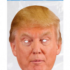 Masca Party Donald Trump - 28 X 21 cm, Radar DTRUM02