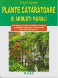 Plante cataratoare si arbusti murali/David Squire