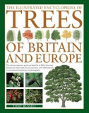The Illustrated Encyclopedia of Trees of Britain and Europe: The Ultimate Reference Guide and Identifier to 550 of the Most Spectacular, Best-Loved an