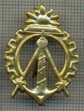 Y 1738 INSIGNA - MILITARA -SEMN DE ARMA - GENIU  -PENTRU COLECTIONARI