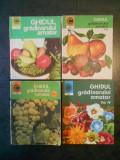 N. LUPSA, ST. BALANESCU - GHIDUL GRADINARULUI AMATOR 4 volume