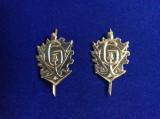 Insigne militare - Insigne România - Semne de armă - Geniu vechi (culoare aurie)