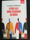 Vladimir Tismaneanu - Efigii ale unui cosmar istoric