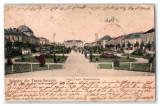 SV * ROMANIA * SALUTARI DIN TURNU SEVERIN * PIATA TUDOR VLADIMIRESCU * 1905, Drobeta-Turnu Severin, Circulata, Fotografie, Printata