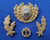 Insigna Militara Ofiter TEHNIC - Coifura insemn cascheta SEMN DE ARMA RSR 1970