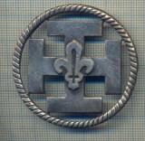 Y 1117 INSIGNA VECHE -CERCETASIE-CERCETASI-SCOUTS DE FRANCE -PENTRU COLECTIONARI