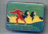 AX 209 INSIGNA-TURISM MONTAN -SKIWANDER NADEL - TANNHEIMERTAL -ELVETIA