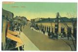 4744 - CAMPINA, Prahova, Market, Romania - old postcard - used - 1908, Circulata, Printata