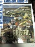 BALCICUL IN PICTURA ROMANEASCA -autor Doina Pauleanu -2007