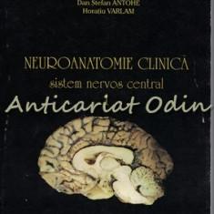 Neuroanatomie Clinica. Sistem Nervos Central - Ion Petrovanu, Dan Stefan Antohe