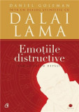 Emotiile distructive | Daniel Goleman