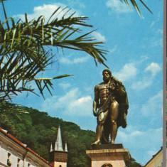 CPIB 15366 - CARTE POSTALA - BAILE HERCULANE. STATUIA LUI HERCULES