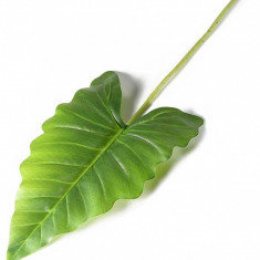 Frunza decor cala 55 cm
