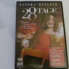 28 zile - dvd