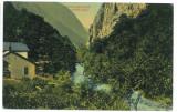 3086 - BAILE HERCULANE, Romania - old postcard - used - 1916, Circulata, Printata