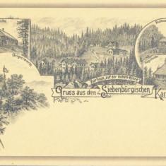 Romania, Casa de Cura Hohe Rinne, reproducere ilustrata din 1895, necirculata
