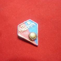 Insigna veche Club Fotbal CS Targoviste -plastic , fara ac