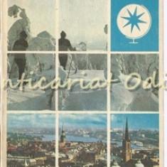 Cumintenia Zapezii - Lia Miclescu