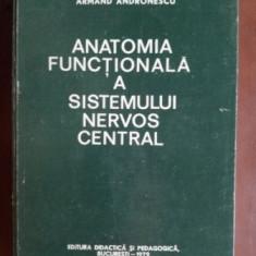 Anatomia functionala a sistemului nervos central- Armand Andronescu