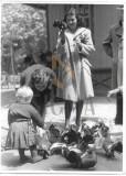 FOTO, WILLY PRAGHER , PORUMBEI IN BUCURESTI