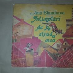 Intamplari de pe strada mea an 1988/ilustratii doina botez/57pag- Ana Blandiana