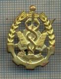 Y 1714 INSIGNA - MILITARA -SEMN DE ARMA - INTENDENTA -PENTRU COLECTIONARI