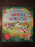 Pictez cu degetele. Animale domestice - Kate Daubney