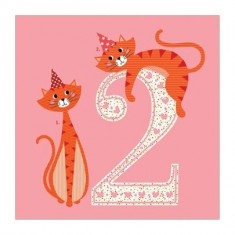 Felicitare - 2 Cats Pink | Soul UK