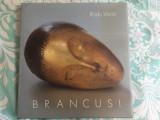 Brancusi - Radu Varia - ediția de lux
