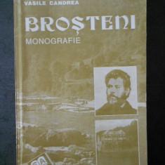 VASILE CANDREA - BROSTENI * MONOGRAFIE
