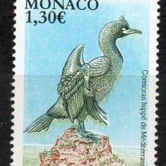 MONACO 2018, Fauna - Pasari, serie neuzata, MNH
