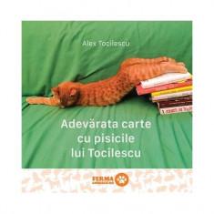 Adevărata carte cu pisicile lui Tocilescu