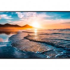 Professional Display Samsung 65QHR 65 inch 8ms Ultra HD 4K Black