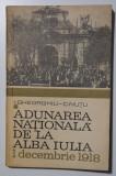 I. Gheorghiu; C. Nuțu - Adunarea Națională de la Alba Iulia - 1 decembrie 1918