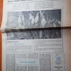 Ziarul romania mare 1 februarie 1991-redactor sef corneliu vadim tudor