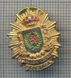 AX 894 INSIGNA - POLITIE -POLICIA LOCAL -COSLADA -SPANIA -PENTRU COLECTIONARI