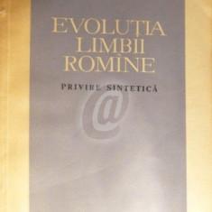 Evolutia limbii romane - privire sintetica