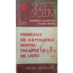 Probleme de matematica pentru treapta I si a II-a liceu, vol. 2