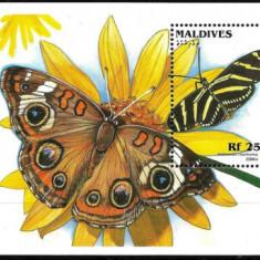 Maldives 1996 - Fluturi, colita neuzata