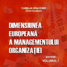 DIMENSIUNEA EUROPEANĂ A MANAGEMENTULUI ORGANIZAȚIEI. Sinteze, vol. 1