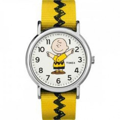 Ceas copii Timex TW2R41100