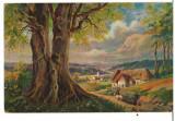 CPIB 16781 CARTE POSTALA - FELICITARE, PICTURA, PEISAJ, VECHE, DESSINS, Necirculata, Fotografie